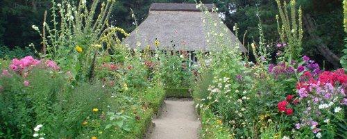 Gartenboden Oder Hortisol Boden Des Jahres 2017 Bodenwelten